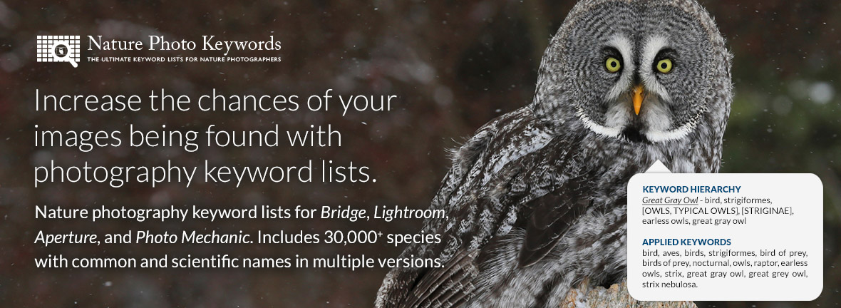 Increase the chances of your images being found with photography keyword lists. Nature photography keyword lists for Bridge, Lightroom, Aperture, and Photo Mechanic. Includes 30,000+ species with common and scientific names in multiple versions.