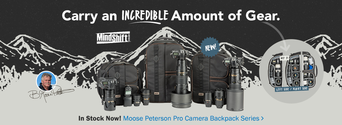 Moose Peterson camera bags in stock now! Carry an incredible amount of gear. See the Moose Peterson pro camera backpack series >