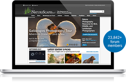 Photography gear store for nature photographers 23842 photography forum members fandeluxe Gallery